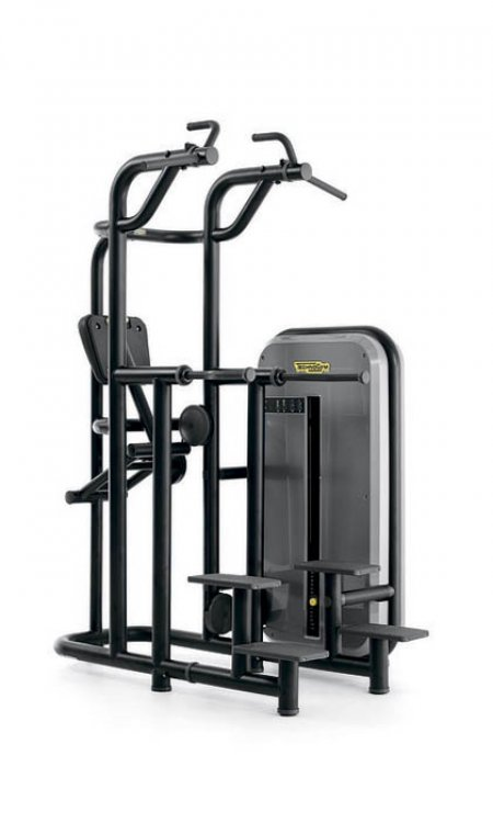 Kneeling Easy Chin Dip от Technogym